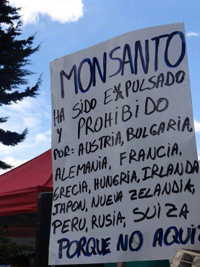 En varios países los productos de la corporación están prohibidos FOTO: Ñamoseke Monsanto en Facebook