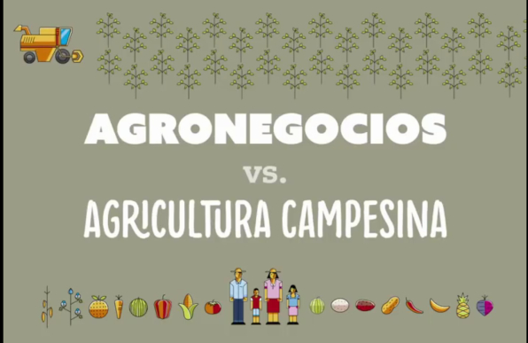 agricultura agronego